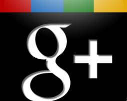 Google Plus (g+)