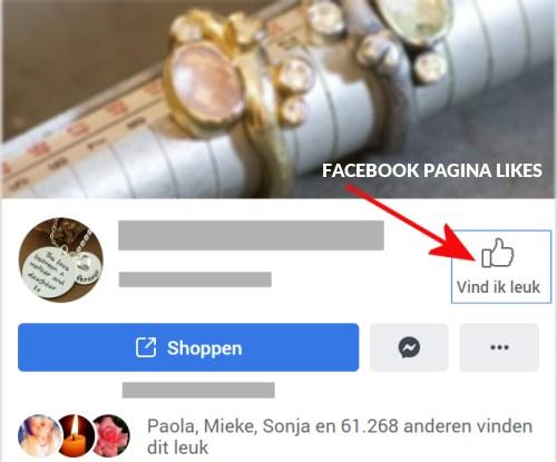 likes facebook pagina